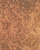 Texture en bois background_elm_33 Photographie stock libre de droits