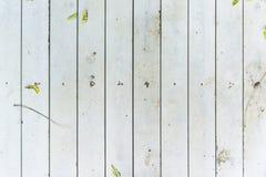 Texture en bois blanche Images stock