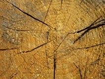 Texture en bois criquée Images libres de droits