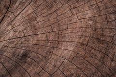 Texture en bois criquée naturelle image libre de droits