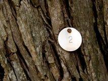 Texture en bois d'écorce avec l'onglet en métal Photo libre de droits
