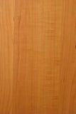 Texture en bois d'érable Photographie stock libre de droits