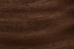 Texture en bois d'acajou Photo libre de droits