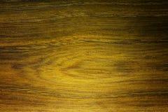 Texture en bois d'arbre d'ortie Texture médicinale très rare en bois d'arbre Photo stock