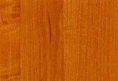 Texture en bois d'aulne de plan rapproché Photographie stock libre de droits