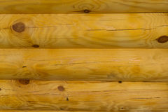 Texture en bois de blocs Photos libres de droits