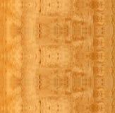 Texture en bois de bouleau de QG Sandy Photographie stock libre de droits
