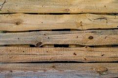 Texture en bois de Brown arbre, fond Photos stock