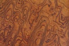 Texture en bois de brun foncé Image libre de droits