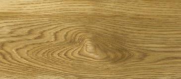 Texture en bois de chêne Images stock