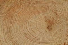 Texture en bois de coupe de croix Photos libres de droits