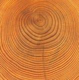 Texture en bois de coupure Images stock