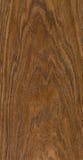 Texture en bois de coupure Photos libres de droits