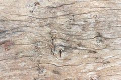 Texture en bois de coupure avec des pointes Photo libre de droits
