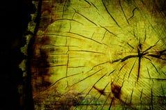 Texture en bois de coupure de plan rapproché photo libre de droits
