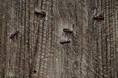 Texture en bois de cru Photo libre de droits