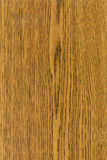 Texture en bois de Durmast Ðak Image stock