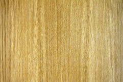Texture en bois de Durmast Photos stock