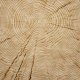 Texture en bois de fond Photos libres de droits