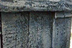 Texture en bois de frontière de sécurité Images libres de droits