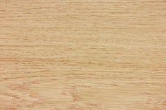 Texture en bois de hêtre photos stock