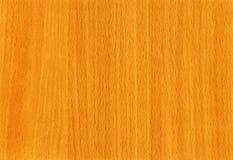 Texture en bois de hêtre de QG au fond Photos stock