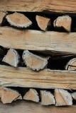 Texture en bois de logarithmes naturels photos libres de droits