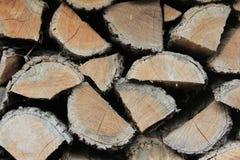 Texture en bois de logarithmes naturels photographie stock libre de droits