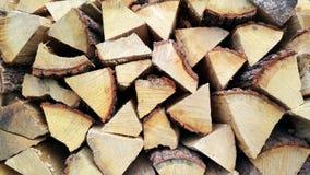 Texture en bois de modèle Photos libres de droits