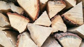 Texture en bois de modèle Image stock