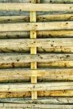 Texture en bois de mur Image libre de droits