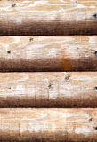Texture en bois de mur de planche Image libre de droits