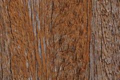 Texture en bois de mur (endommagée) Images stock