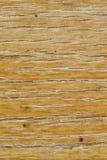 Texture en bois de panneau image stock