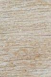 Texture en bois de panneau images stock