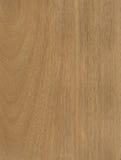 Texture en bois de placage de Jequetiba Photos libres de droits