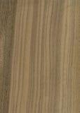 Texture en bois de placage de noix photographie stock
