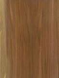 Texture en bois de placage de plomb photos libres de droits