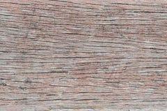 Texture en bois de plan rapproché Photographie stock libre de droits