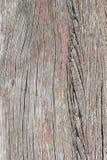 Texture en bois de plan rapproché Photos libres de droits