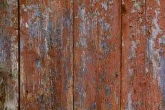Texture en bois de planche Photographie stock