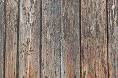 Texture en bois de porte Photographie stock