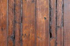 Texture en bois de porte Images libres de droits