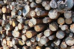 Texture en bois de poteau photo libre de droits