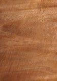 Texture en bois de texture Photo libre de droits