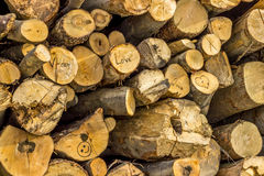 Texture en bois de valentines Photo stock