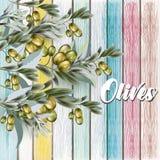Texture en bois de vecteur grunge de bois peint, rétro style avec des branches d'olives illustration stock