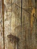 Texture en bois de vintage Image stock