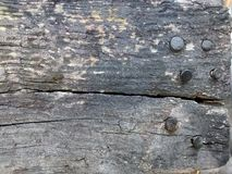 Texture en bois et de clous Photographie stock libre de droits