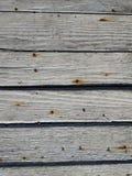 Texture en bois extérieure Photos libres de droits